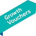Get 50% off strategic business advice from vclever and Growth Vouchers