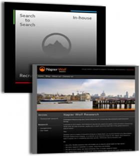 Napier Wolf site screenshot